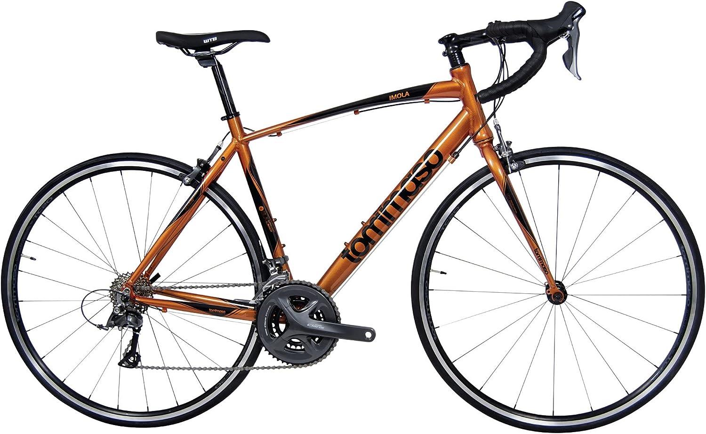 bike for 300 lbs man
