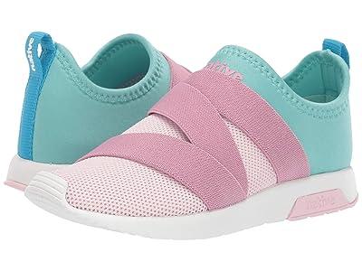 Native Kids Shoes Phoenix (Little Kid) (Blossom Pink/Hydrangea Blue/Shell White) Girls Shoes