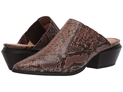 Splendid Hailee II (Brown) Women