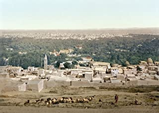 Syria Damascus C1895 Nview Of Damascus From Salhieh Syria In The Foreground A Shepherd Tends His Flock Photochrome C1895 Poster Print by (18 x 24)