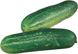 Burpee Straight Eight Slicing Cucumber Seeds 200 seeds