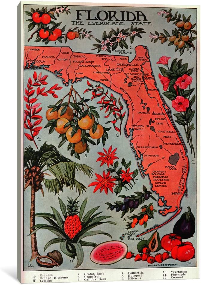 outlet iCanvasART 1 Piece State Map Florida of Rare 'Natural Resources'-Vint