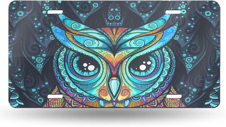 Delerain License Plate Aluminum Owl Max 53% depot OFF Car Metal Tag L Front Cover