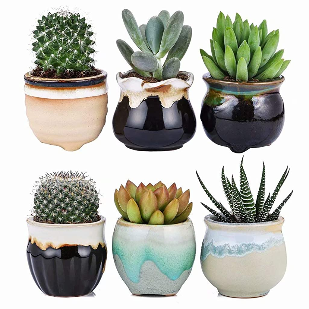 2.5 Inch Ceramic Planters,Flowing Glaze Succulent Planters Cactus Flower Plant Pot/Container Mini Succulent Plant Pots Black White Base Serial 6pcs in Set