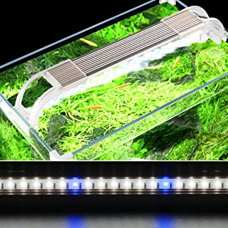 JackSuper Aquatic Plant Aquarium Light for Small Fish Tank Growth Planted Lighting with Extend Bracket Adjustable White Blue LED Lamp Kits Fits for Plant Grow Reef Tank