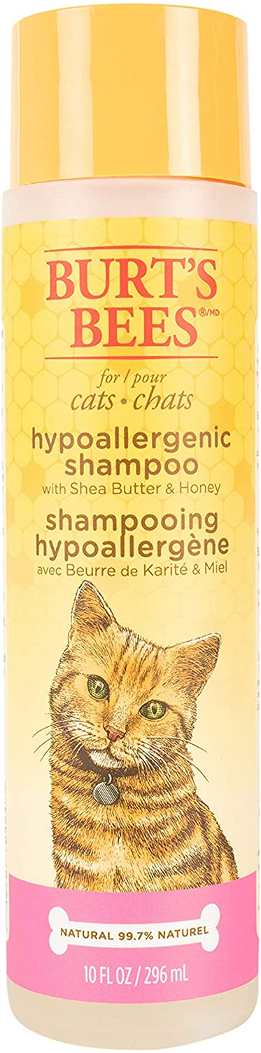 Burt's Bees for Cats Hypoallergenic Cat Shampoo with Shea Butter & Honey   Best Shampoo for Cats with Dry or Sensitive Skin   Cruelty Free, Sulfate & Paraben Free, pH Balanced for Cats - 10oz : Pet Supplies