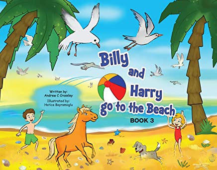 Billy and Harry go to the Beach (Billy and Harry Adventures Book 3)