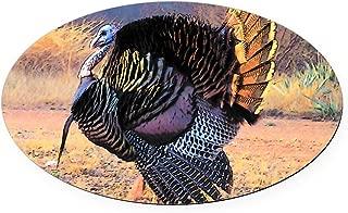 CafePress Wild Turkey Gobbler Oval Car Magnet, Euro Oval Magnetic Bumper Sticker