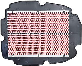 Luftfilter für VFR800 98 15 Road Passion (pack of 1)