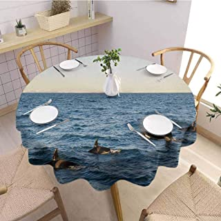 S-ANT Garden Round Tablecloth Whale,A Real Photo Image of Four Killer Whales Coming Out of The Sea Artwork Print,Blue and Black Wedding Patio Dining Dorm D42