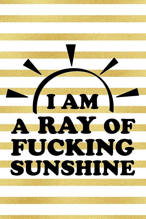 名義で化合物虫I Am A Ray Of Fucking Sunshine: Blank Lined Notebook Journal Diary Composition Notepad 120 Pages 6x9 Paperback ( Female Empowerment )