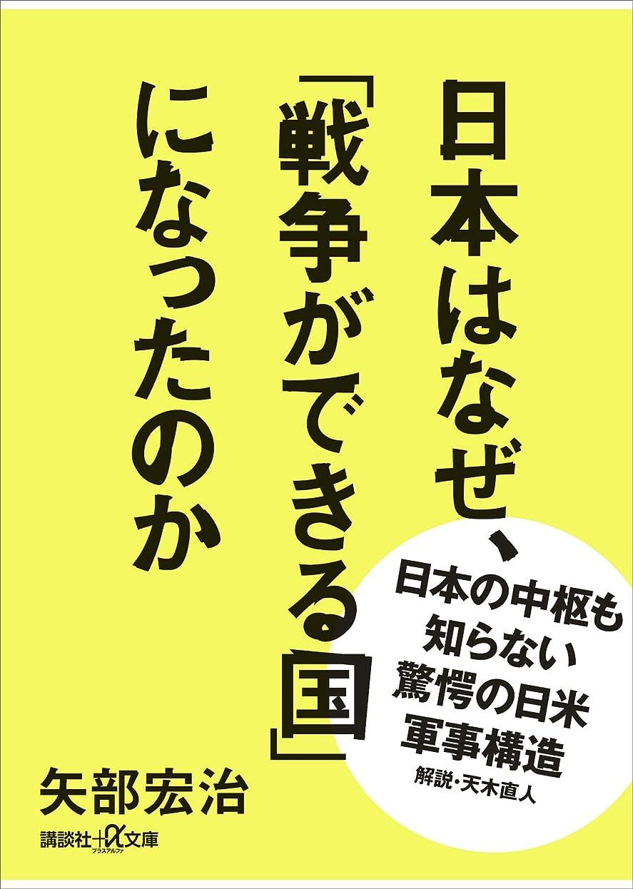 ショッピングセンター乱用体現する日本はなぜ、「戦争ができる国」になったのか (講談社+α文庫)