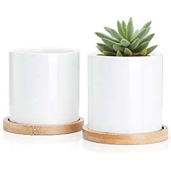 Succulent Plant Pots - 3 Inch Small Ceramic Cylindrical Planter Containers for Flowers or Cactus with Drainage Hole and Bamboo Tray - White Set of 2