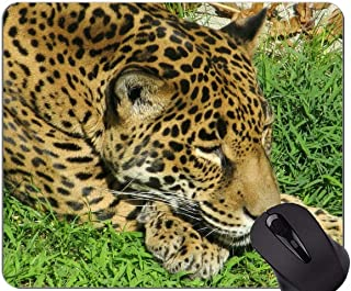 Gaming Mouse Pad Custom,Jaguar Leopard Mouse Pad With Stitched Edge