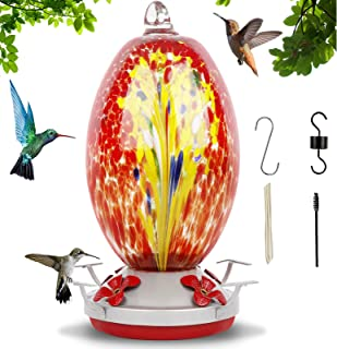 Hummingbird Feeders for Outdoors, Hand Blown Glass Leakproof 30 Ounces Humming Bird Feeders with S Hook Hanging Wires Brus...