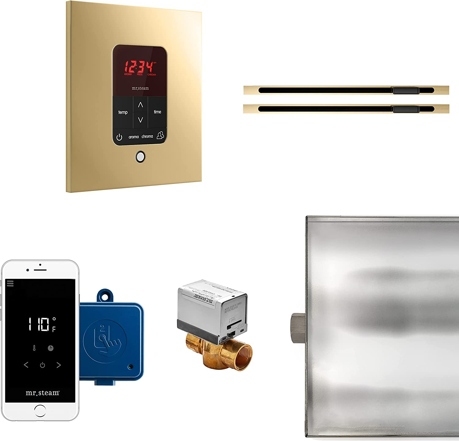 MrSteam Butler Max Linear Package Polished Brass Control Square 71% Finally popular brand OFF