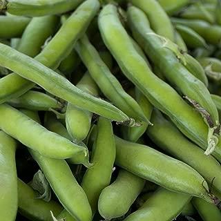 Roma II Bush Bean Seeds - 1 Lb - Non-GMO, Heirloom Green Snap Roma 2 Bean Seeds - Vegetable Garden Seeds