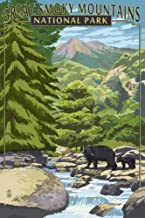 Great Smoky Mountains National Park, Tennesseee - Leconte Creek and Bear Family (12x18 Art Print, Wall Decor Travel Poster)