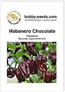 Bobby-Seeds Chilisamen Habanero Chocolate Portion