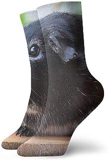 tyui7, Calcetines de compresión antideslizantes de roedor de conejillo de indias calcetines de compresión antideslizantes calcetines deportivos de 30 cm para hombres, mujeres y niños