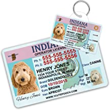 1 Cute Pooch Indiana Driver License Custom Dog Tag for Pets and Wallet Card - Personalized Pet ID Tags - Dog Tags For Dogs - Dog ID Tag - Personalized Dog ID Tags - Cat ID Tags - Pet ID Tags For Cats