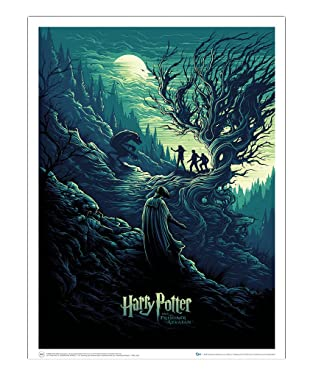 QMX Harry Potter and the Shadow of the Werewolf 18 x 24 inch Art Print Poster