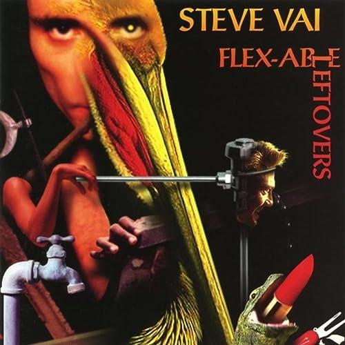 Flex able Leftovers Explicit Steve Vai product image