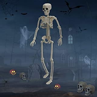 NORSENS 15 inch Skeleton Halloween Decorations - Posable Skeleton with Movable Joints, Small Plastic Full Body Skeleton for Halloween, Graveyard, Haunted House Decor
