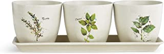 DEMDACO Dean Crouser Herb Thyme Oregano Basil Watercolor On White 11 x 4 Bamboo Composite Standing Planter ...