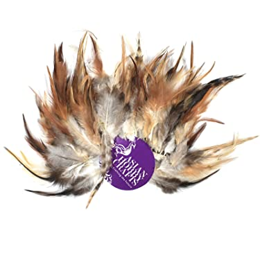 Asian Hobby Crafts Natural Dyed Feathers : Size- Multi : Color- Wild Hen : 80pcs