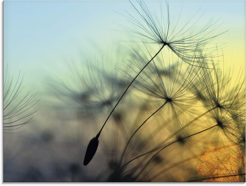 Glasbild Pusteblume Close Up quadratisch beige WANDDEKO BILD Ecken abgerundet