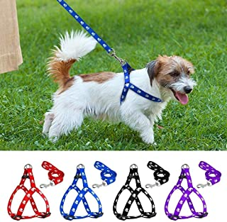 PSK PET MART Nylon Adjustable Leash with Harness Set Printed Nylon Puppy Harness for Small & Medium Dogs Colour May Vary (...