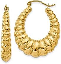 Best 14k gold shrimp earrings Reviews