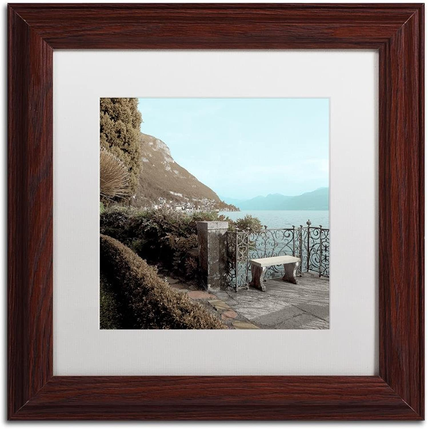 Trademark Fine Art Lake Vista IV by Alan bluestein, White Matte, Wood Frame 11x11