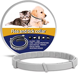 OSKIDE Flea Collar for Cats, Dog Flea Collar Adjustable Cats Flea and Tick Treatment Prevention Collar- Safe - 12 Months Protection for The Cat and Dog Flea