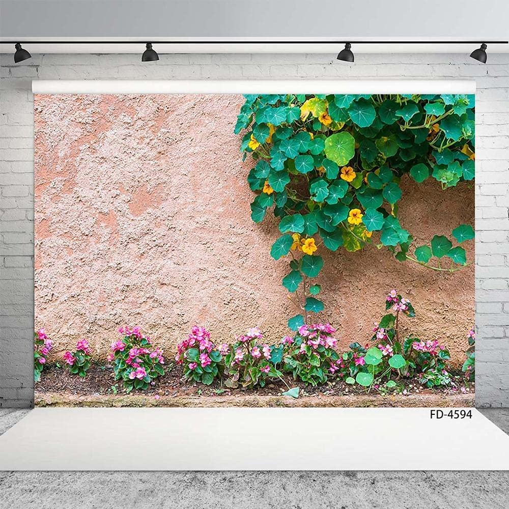 Photo Background Very popular Flowers Plant Cement Customized Wall Safety and trust