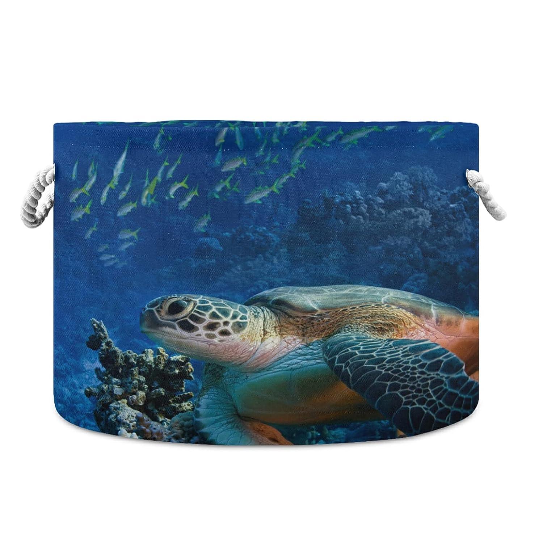 One Bear Beautiful Sea Max 74% OFF Genuine Turtle Fish Rou Storage Coral Basket Reef