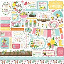 Echo Park Paper Company LSP204014 I Love Spring Element Sticker Paper, Pink, Teal, Yellow, Green