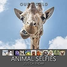 Our World: Animal Selfies 2020 Wall Calendar. Funny Animal Calendar