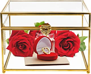 Wistwoxxon Decorative Boxes, Clear Glass Plant Terrarium Organizer with Gold Metal Frame, Tabletop Curio Case/Shadow Box for Wedding Receptions, Planter Holder,Gift & Display Box (Rectangle)