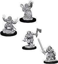 Pathfinder Battles Deep Cuts Miniatures Bundle: Female Dwarf Summoner W7 + Female Dwarf Barbarian W8