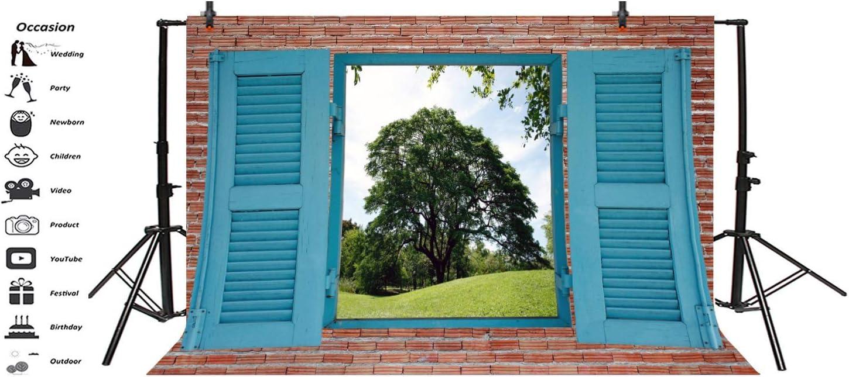10x6.5ft Farm Windowsill Backdrop Vinyl Photography Background Brick Wall Outdoor Spring Landscape Window View Grass Field Green Grove Children Adult Portrait Photo Studio