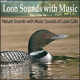Sounds of the Loons With Relaxing Piano