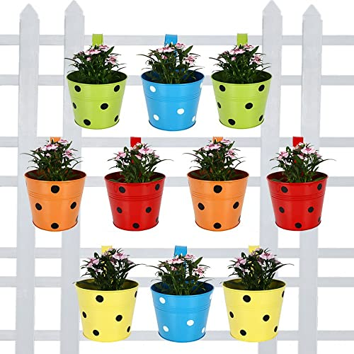 TrustBasket Round Dotted Railing Planters (Multicolour, Pack of 10) product image