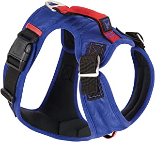 Gooby - Pioneer Dog Harness, Small Dog Head-In Harness with Control Handle and Seat Belt Restrain Captability, Blue, Small