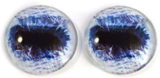 Blue Horse Glass Eyes Realistic Animal Pair for Art Dolls, Sculptures, Props, Masks, Fursuits, Jewelry Making, Taxidermy, and More (25mm)