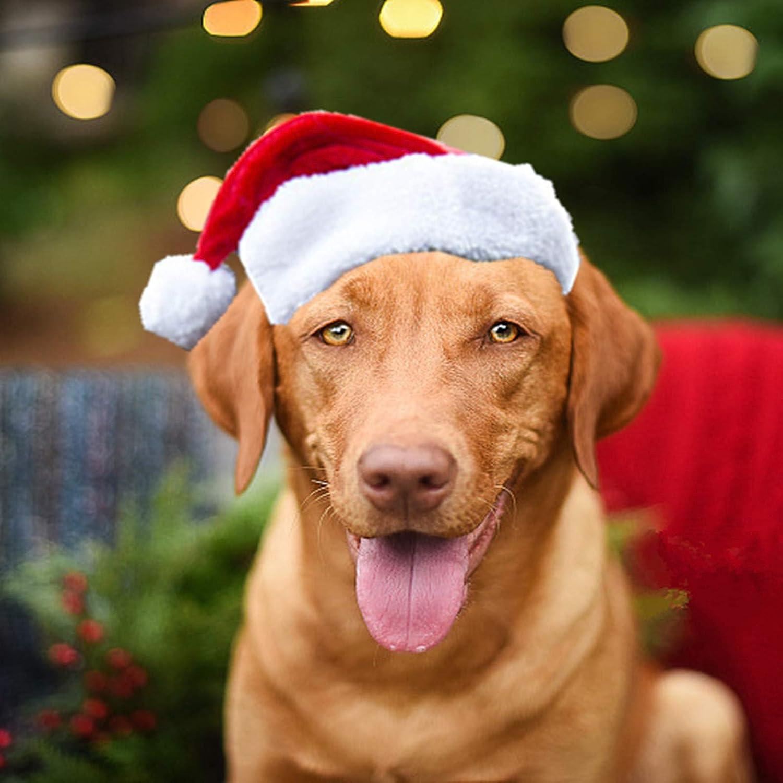 PULEIDI Pet Dog Cat Santa Hat Christmas Challenge the lowest price Ranking TOP18 of Japan ☆ Pe Costume -