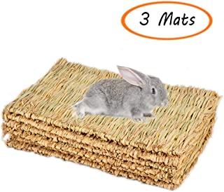 Best house rabbit supplies Reviews