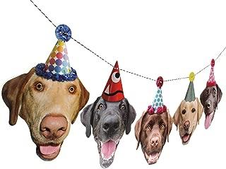 Labrador Garland, dog birthday party banner decoration