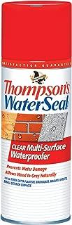 thompson deck paint